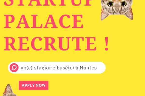Startup palace recrute !